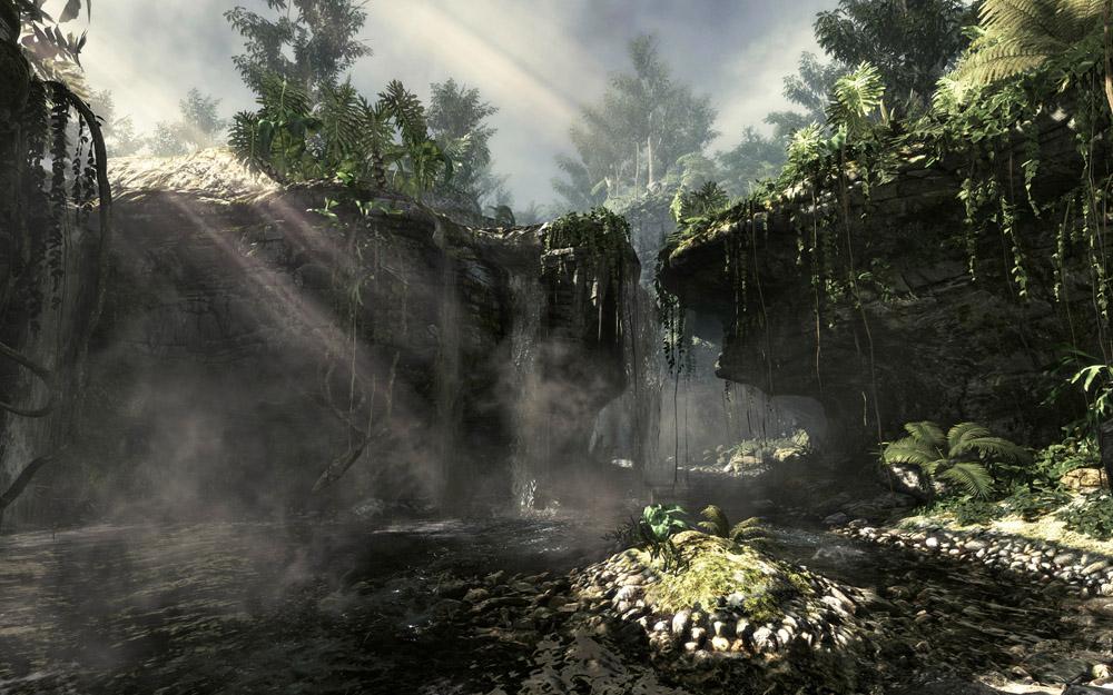 jungle-environment