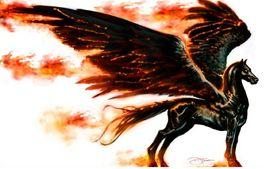 Pegasus_!