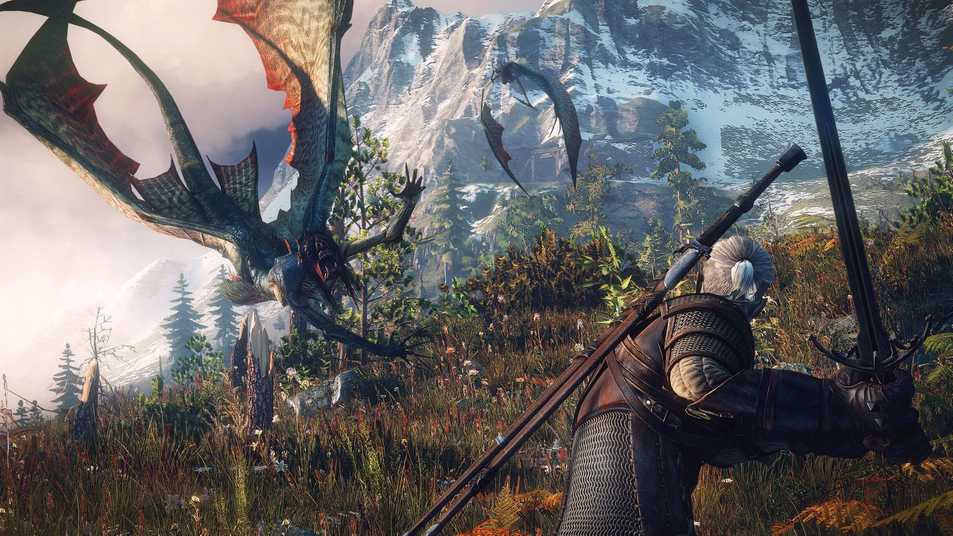 The_Witcher_3_Wild_Hunt_The_sirens_may_look_beautiful_in_the_water-but_once_they_re_out_of_it-they_change_into_deadly-flying_creatures..0