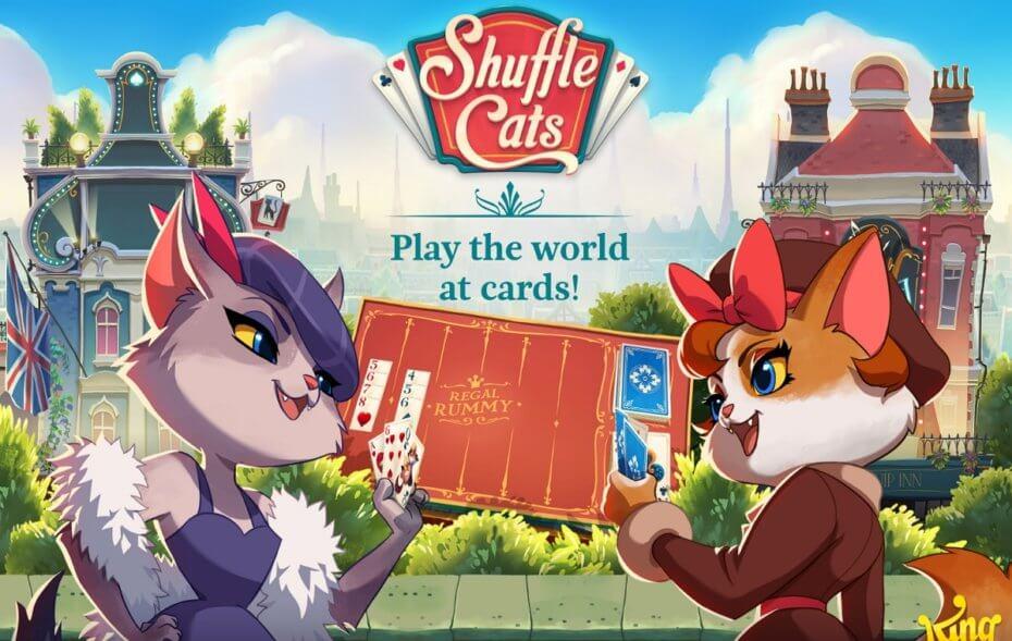 shuffle-cats-930x589